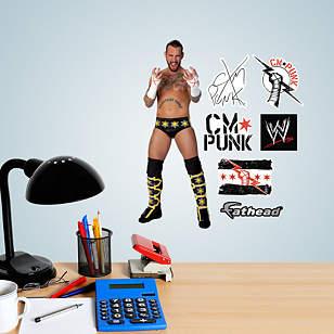 CM Punk Teammate