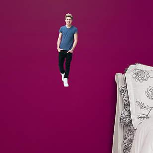 Niall Horan 1D Teammate