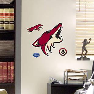 Phoenix Coyotes Teammate