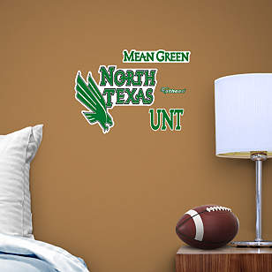 North Texas Mean Green Teammate