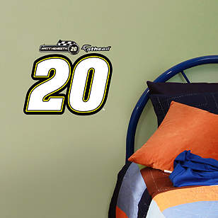 Matt Kenseth #20 Logo Teammate