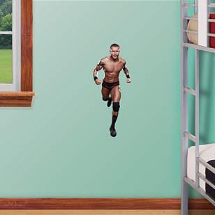 Randy Orton Teammate