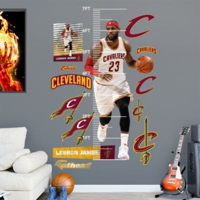 LeBron James 2016 NBA Finals Block Mural