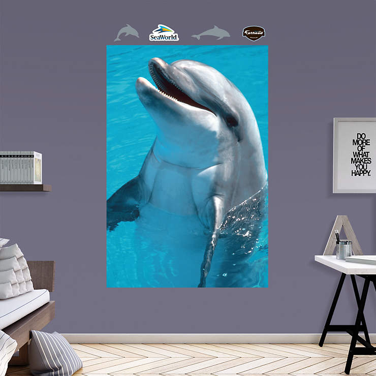 Dolphin mural wall decal shop fathead for seaworld decor for Dolphin wall mural