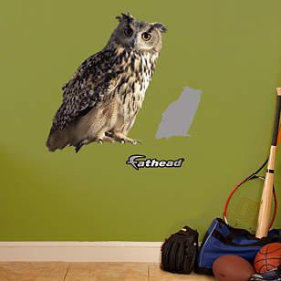 Owl - Fathead Jr
