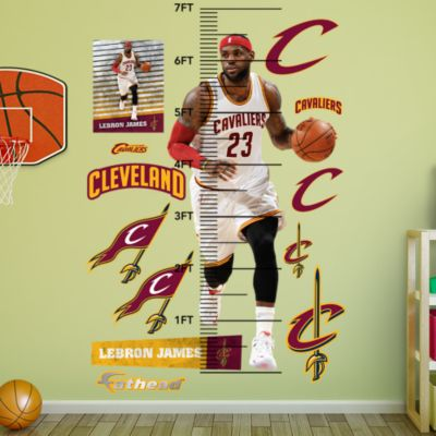 LeBron James 2016 NBA Finals MVP Trophy Mural