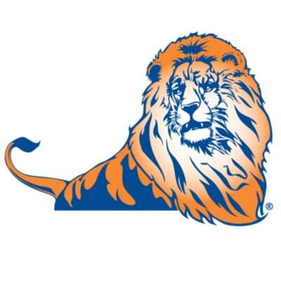 Lincoln Lions