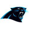 Carolina Panthers Decor