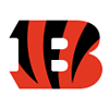 Cincinnati Bengals Decor