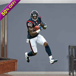 Andre Johnson Wide Receiver Fathead Wall Decal