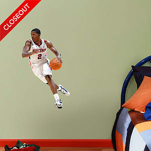 Joe Johnson - Fathead Jr. Fathead Wall Decal