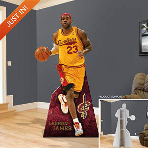 LeBron James Throwback Stand Out