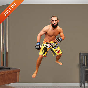 Johny Hendricks Fathead Wall Decal