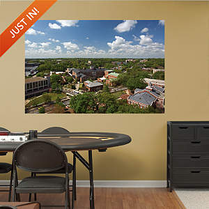 UGA Campus Aerial View Mural Fathead Wall Decal