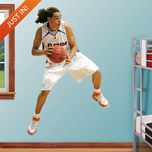 Joakim Noah - Florida Fathead Wall Decal