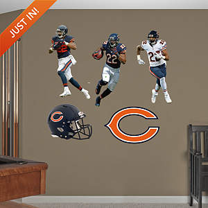 Matt Forte Hero Pack Fathead Wall Decal