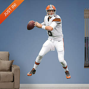 Brian Hoyer Fathead Wall Decal