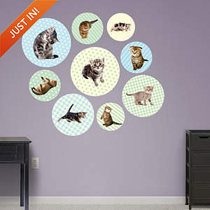 Kitten Circles Fathead Wall Decal