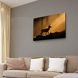 Deer Silhouette Canvas