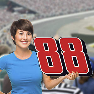 Dale Earnhardt Jr. -  #88 Logo Big Head Cut Out