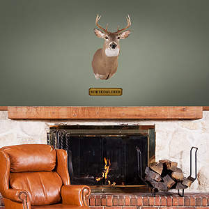 Mounted Whitetail Deer Head - Fathead Jr. Fathead Wall Decal