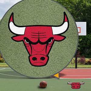 Chicago Bulls Street Grip Outdoor Graphic