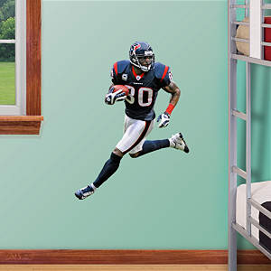 Andre Johnson - Fathead Jr. Fathead Wall Decal