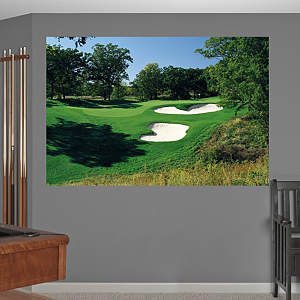 PGA TOUR TPC Deere Run Hole 3 Mural Fathead Wall Decal