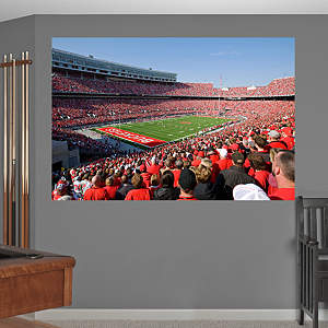 Ohio Stadium - The Horseshoe Mural Fathead Wall Decal