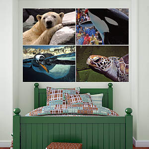 SeaWorld Close Up Murals Fathead Wall Decal