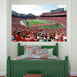 Wisconsin Badgers - Camp Randall Stadium Mural Fathead Wall Decal