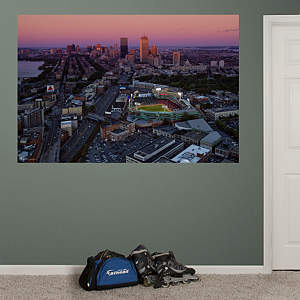 Fenway Park Skyline Mural Fathead Wall Decal