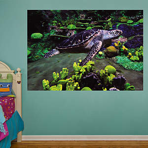 Sea Turtle Mural Fathead Wall Decal