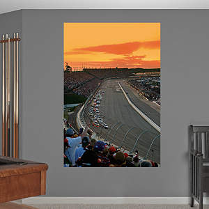 Darlington Raceway Mural Fathead Wall Decal