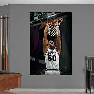 David Robinson Mural Fathead Wall Decal