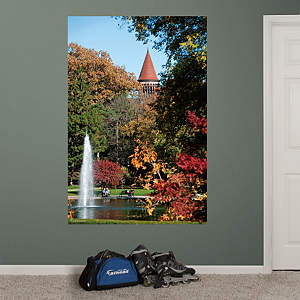 Ohio State - Mirror Lake Outside Orton Hall Mural Fathead Wall Decal