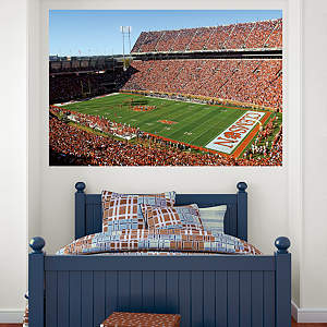 Clemson Tigers - Memorial Stadium Mural Fathead Wall Decal