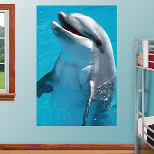 Dolphin Mural Fathead Wall Decal