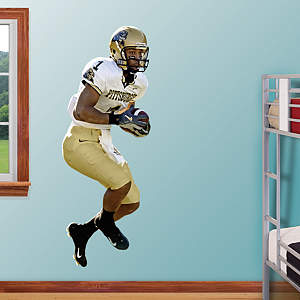 Larry Fitzgerald Pittsburgh Fathead Wall Decal