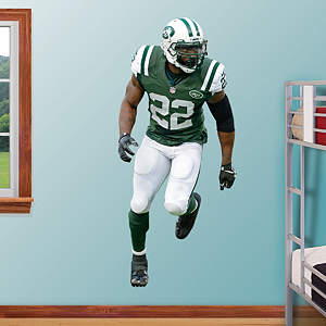 Ed Reed Fathead Wall Decal