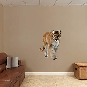 Mountain Lion Fathead Wall Decal