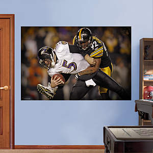 James Harrison Sack - In Your Face Mural Fathead Wall Decal