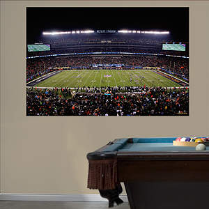 Super Bowl XLVIII Stadium Mural Fathead Wall Decal