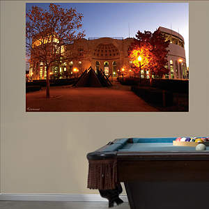 Ohio State - The Shoe Entrance Mural Fathead Wall Decal