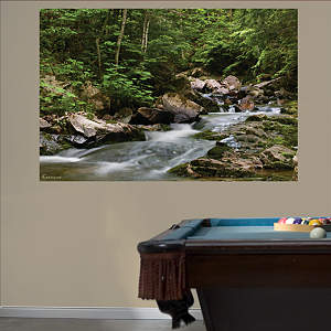 Wilderness Stream Mural Fathead Wall Decal