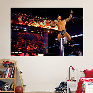 Randy Orton Mural Fathead Wall Decal
