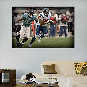 Andre Johnson In Your Face Mural Fathead Wall Decal