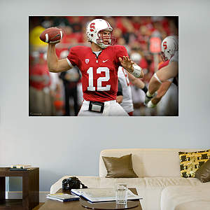 Andrew Luck Stanford Mural  Fathead Wall Decal