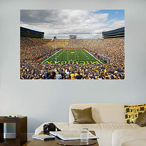 "Michigan Wolverines - Michigan Stadium ""The Big House"" Mural Fathead Wall Decal"