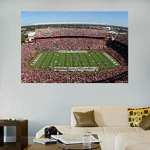 South Carolina - Williams-Brice Stadium Mural Fathead Wall Decal